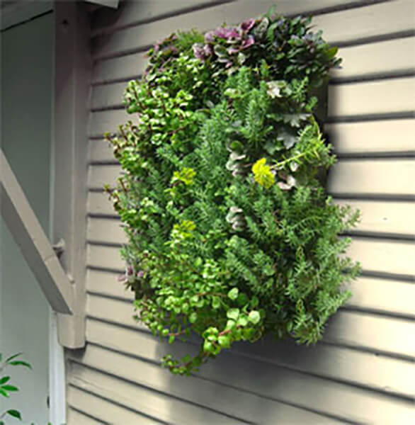 algreen-planting-system -easyverticalgardening.com