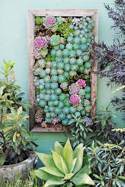 succulent vertical garden - country living.com