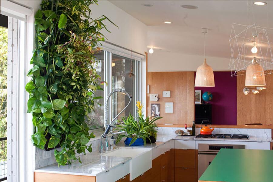 vertical-garden-growediblewalls.com